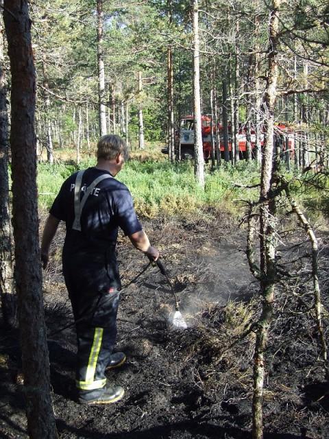 Nõva metsapõleng