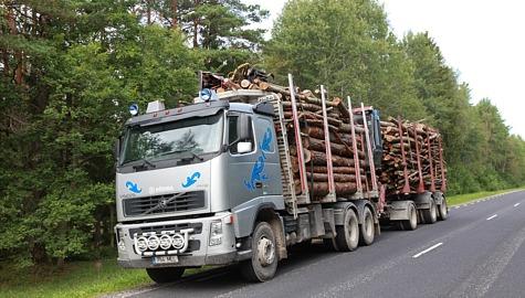 Metsaveoauto