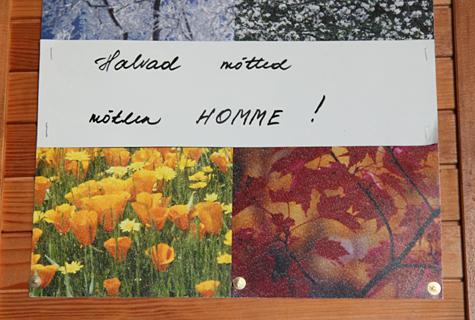 Masenduse eemale peletamiseks on hulgiskleroosi põdeval Anu Mölderil mitu nippi, üks neist on motiveeriv kiri köögiseinal. Foto: Arvo Tarmula