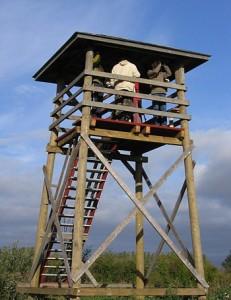 Linnuvaatlustorn. Foto: Aivar Veide