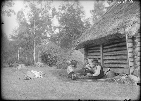ERM Fk 184:34  Heinalised puhkamas ja söömas. Friedrich Kohtitsky, 1912