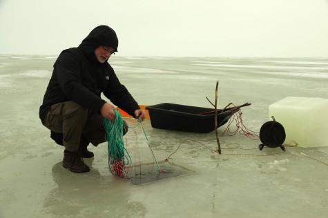 Võrgutamine. Urmas Lauri võrku jää alla laskmas. Foto: Veikko Marin