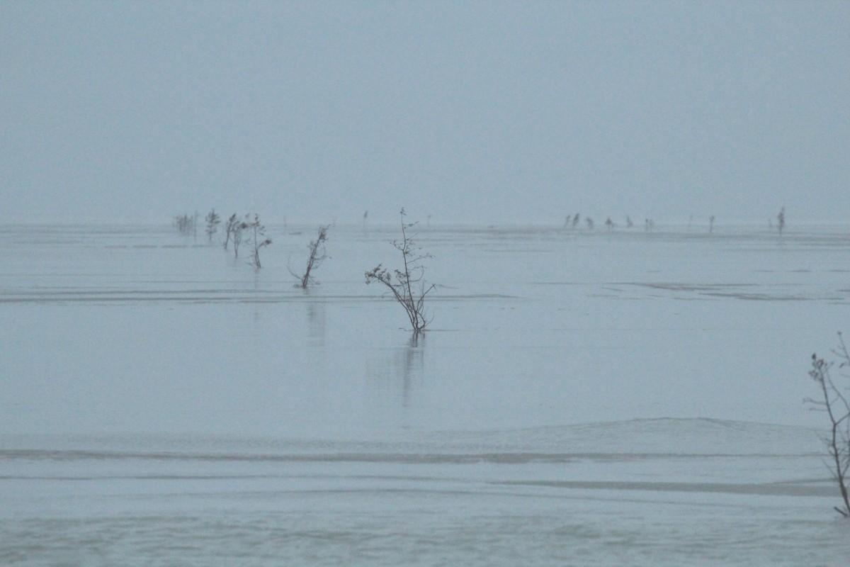 Vormsi jäätee 8. veebruaril. Foto: Urmas Lauri