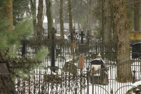 Ristid vanal kalmistul (14)