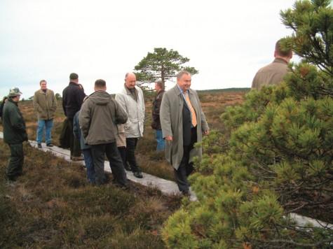Marimetsa laudtee, mida käis uudistamas tollane keskkonnaminister Villu Reiljan, on nüüdseks üles võetud. Foto arhiiv