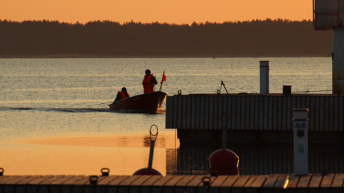 Kalurid naasevad noosiga Orjaku sadamasse. Foto: Urmas Lauri