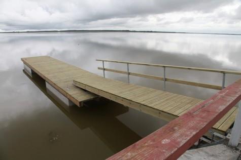 aurulaeva sild (2)