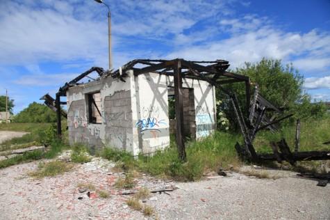 Krimmi holm (7)