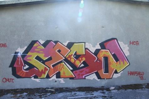 Krimmi holm graffity (15)