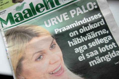 ML  Palo 003