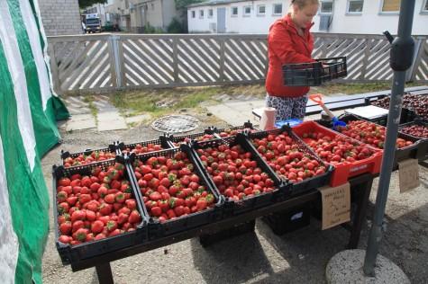 maasikad (4) (1280x853)