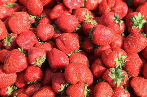 maasikad (8) (1280x853)