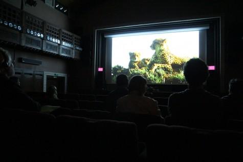Matsalu filmifestival 019