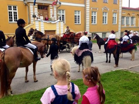 Perepäev hobustega Arvo Tarmula (3)