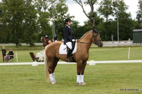 Perepäev hobustega Kaia Vooremaa  (20)