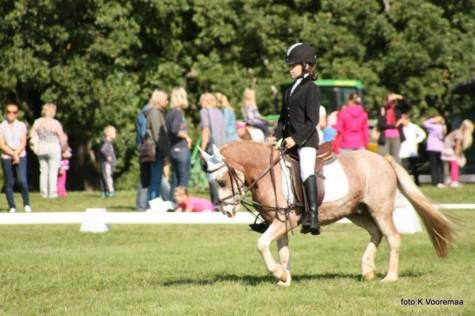Perepäev hobustega Kaia Vooremaa  (4)