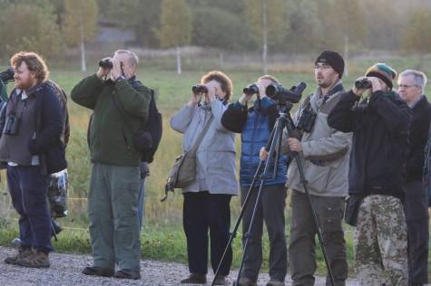 ornitoloogid