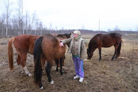 Martna hobused (5)