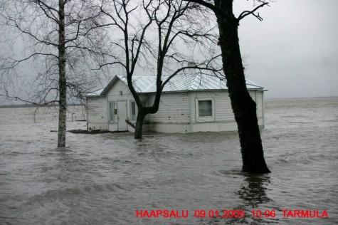 Üleujutus 2005 (4)