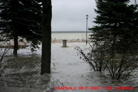 Üleujutus 2005 (6)