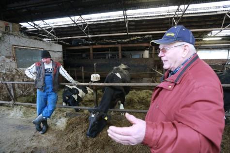Orulepa farm arvo tarmula (13)