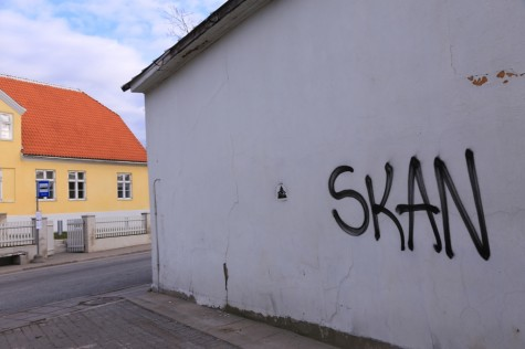Soditud seinad SKAN arvo tarmula (9)