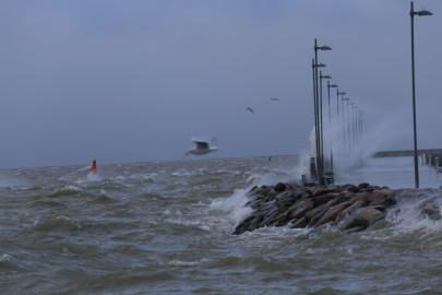 torm Rohukülas 30.11.15