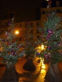 Jõulupuud, mida leiaab igalt väikeselt väljakult Pariisis