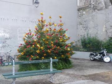 Tüüpilised jõulupuud, mida leiab kõikjalt Pariisist