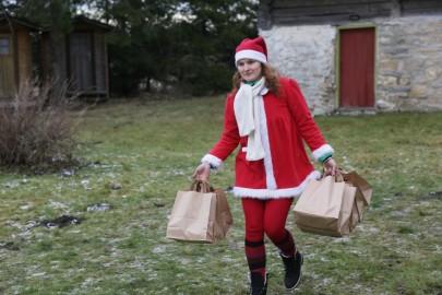 koela jõulumaa14
