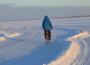 Noarootsi jäätee tarmula