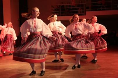 Väike Eestimaa 7