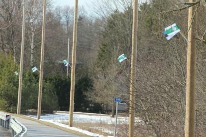 Lääne-Nigula lipud (12)