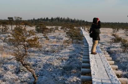 marimetsa loodusrada Andrus Karnau