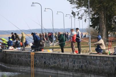 Kalastajad Promenaadil (arvo tarmula) (7)
