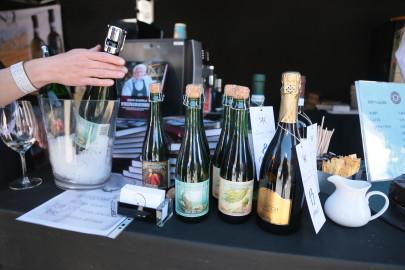 Itaalia veinipidu 2016 (arvo tarmula) (8)