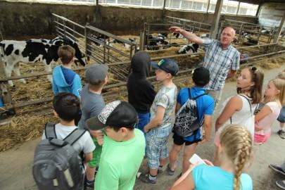Koolilapsed Leediküla lehmalaudas 035