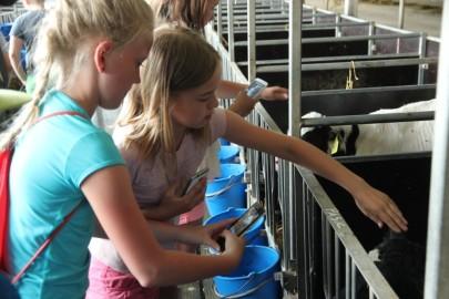 Koolilapsed Leediküla lehmalaudas 080