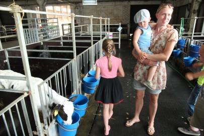 Koolilapsed Leediküla lehmalaudas 112