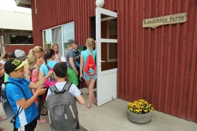 Koolilapsed Leediküla lehmalaudas 175