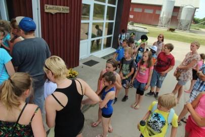 Koolilapsed Leediküla lehmalaudas 179