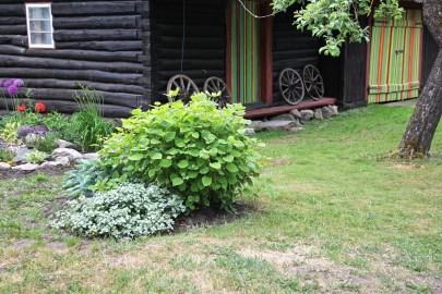 Kulla ja Andres Altmäe kodu_KULLAMAA v Kullamaa küla Rohuaia talu8