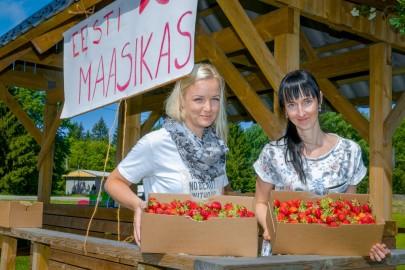 maasikas linnamäe eduard laur