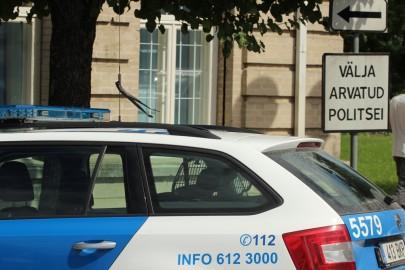 Leinalintidega politseiauto (1)
