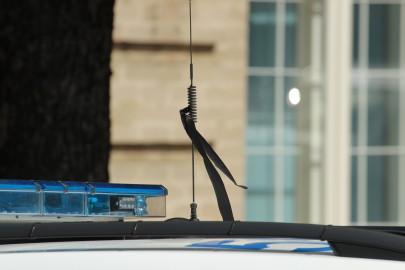 Leinalintidega politseiauto (2)
