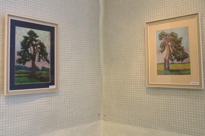 Ants Roos kunstikooli galeriis (arvo tarmula) (1)