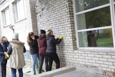 Seintepuhastus. Tarmula09