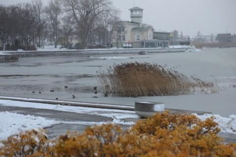 talv_tuli_tarmula23