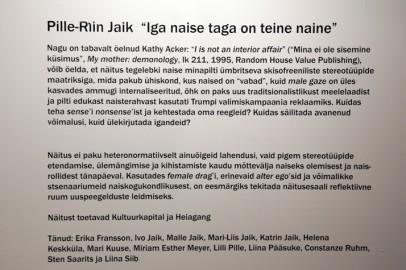 Pille-Riin Jaik linnagaleriis. Tarmula02