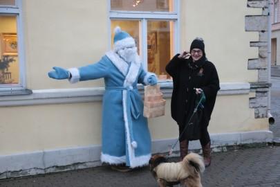 beguta_joululaat_tarmula10